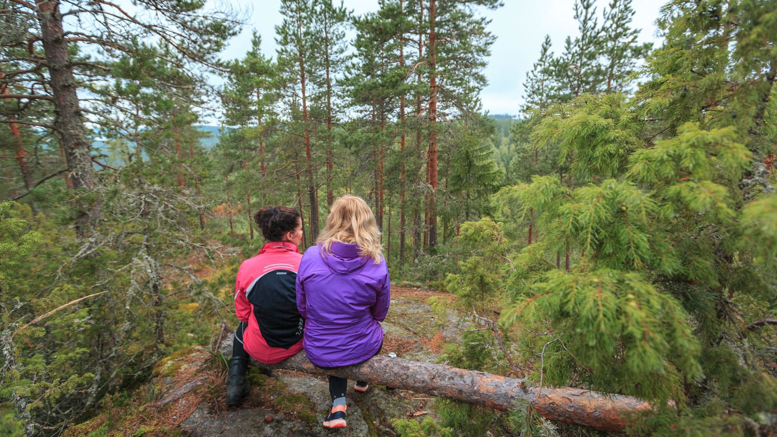 Two persons sitting in forest.