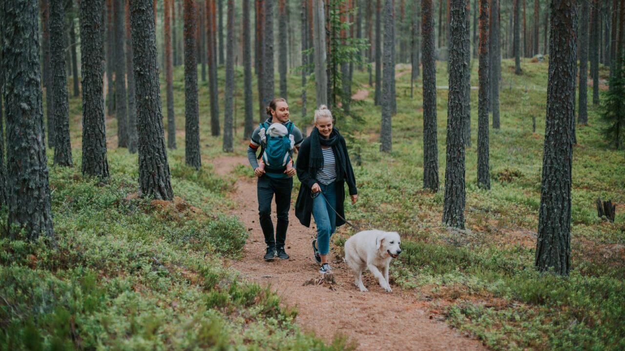 Koira ja perhe luontopolulla Leivonmäen kansallispuistossa