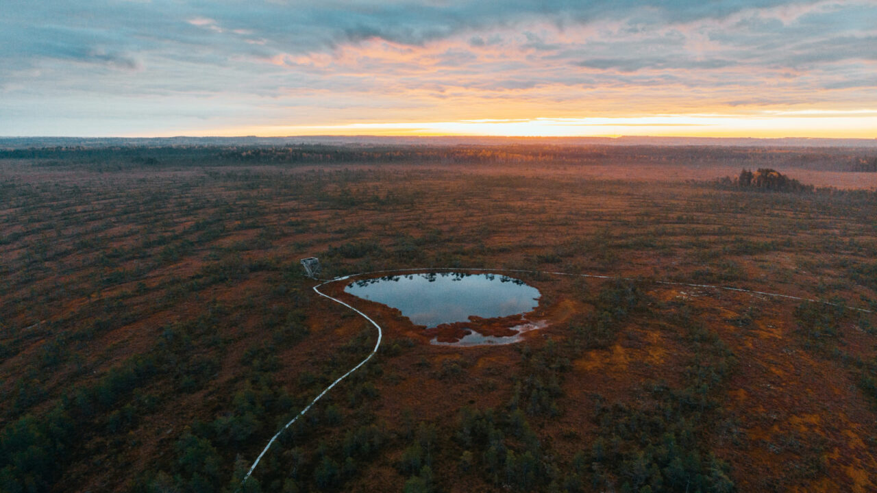 Ilmakuva Kirveslammelta, Leivonmäen kansallispuistosta ilta-auringon aikaan