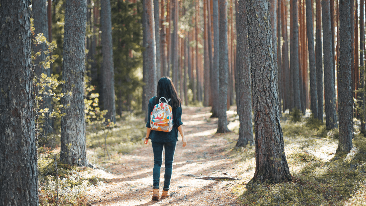 Person walking in forest