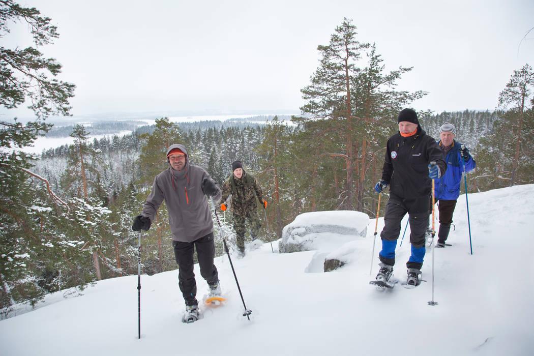 Neljä henkilöä lumikenkäilevat Etelä-Konneveden kansallispuistossa