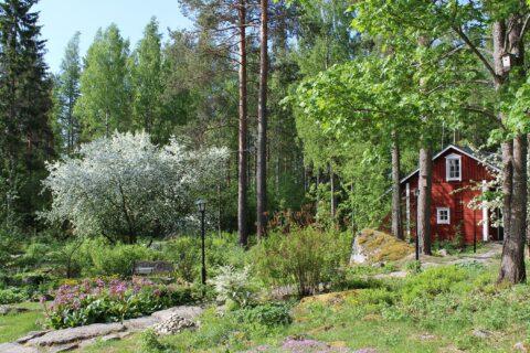 Punainen mökki vehreässä puutarhassa