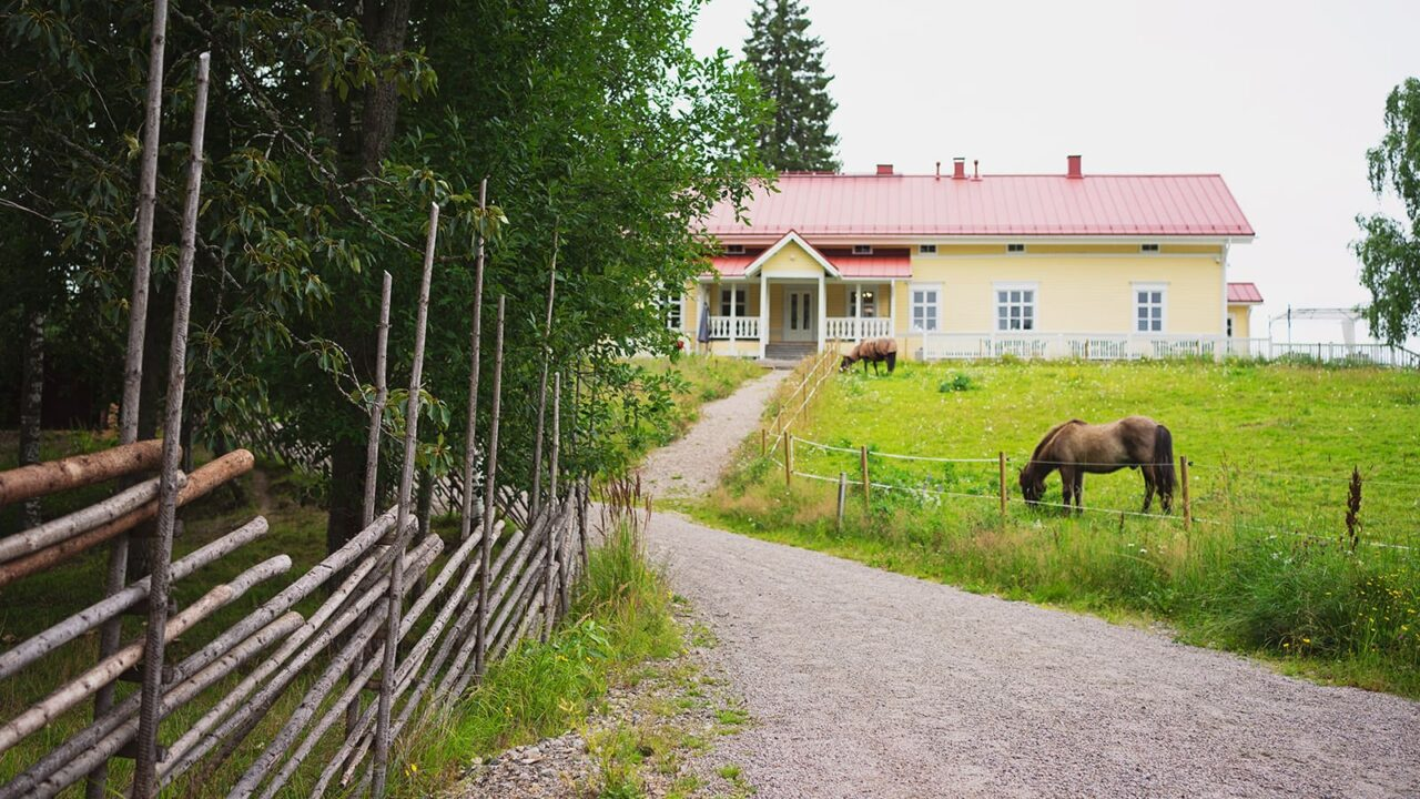 Horses in front of the main building of Marjoniemi rectory.