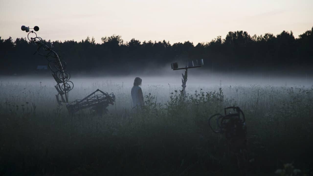 Henkilö seisoo usvaisella pellolla.
