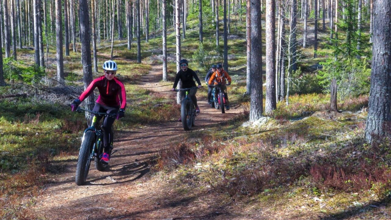 Four people cycling along the singing bogey man -nature trail.