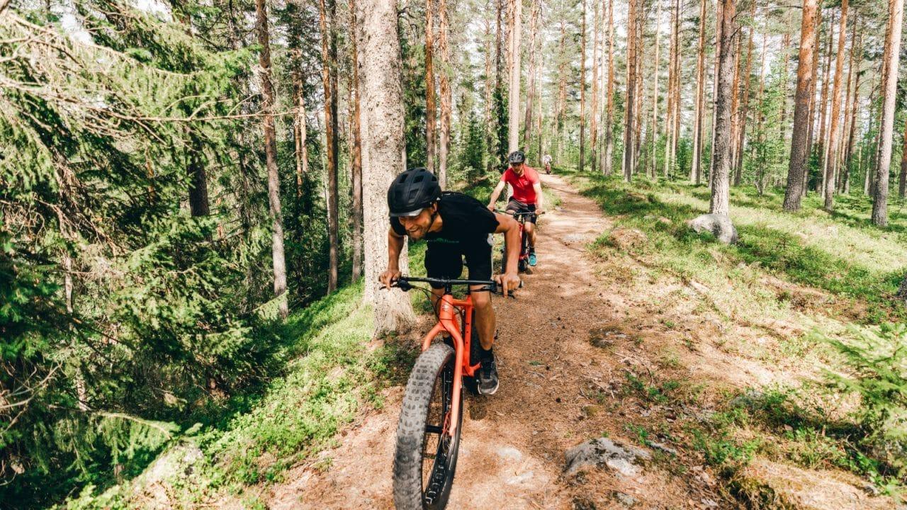 Kaksi henkilöä ajaa fatbike-pyörillä metsässä.