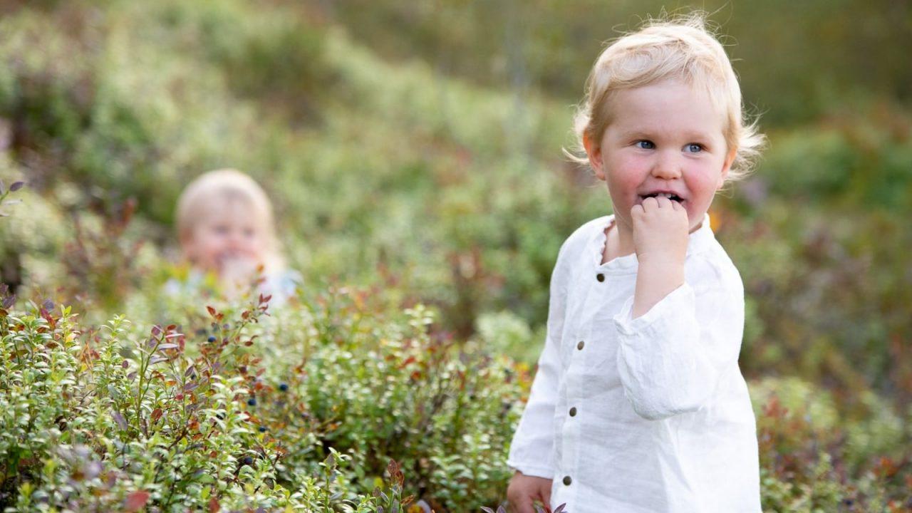 Kaksi pientä lasta metsässä mustikanvarpujen keskellä.
